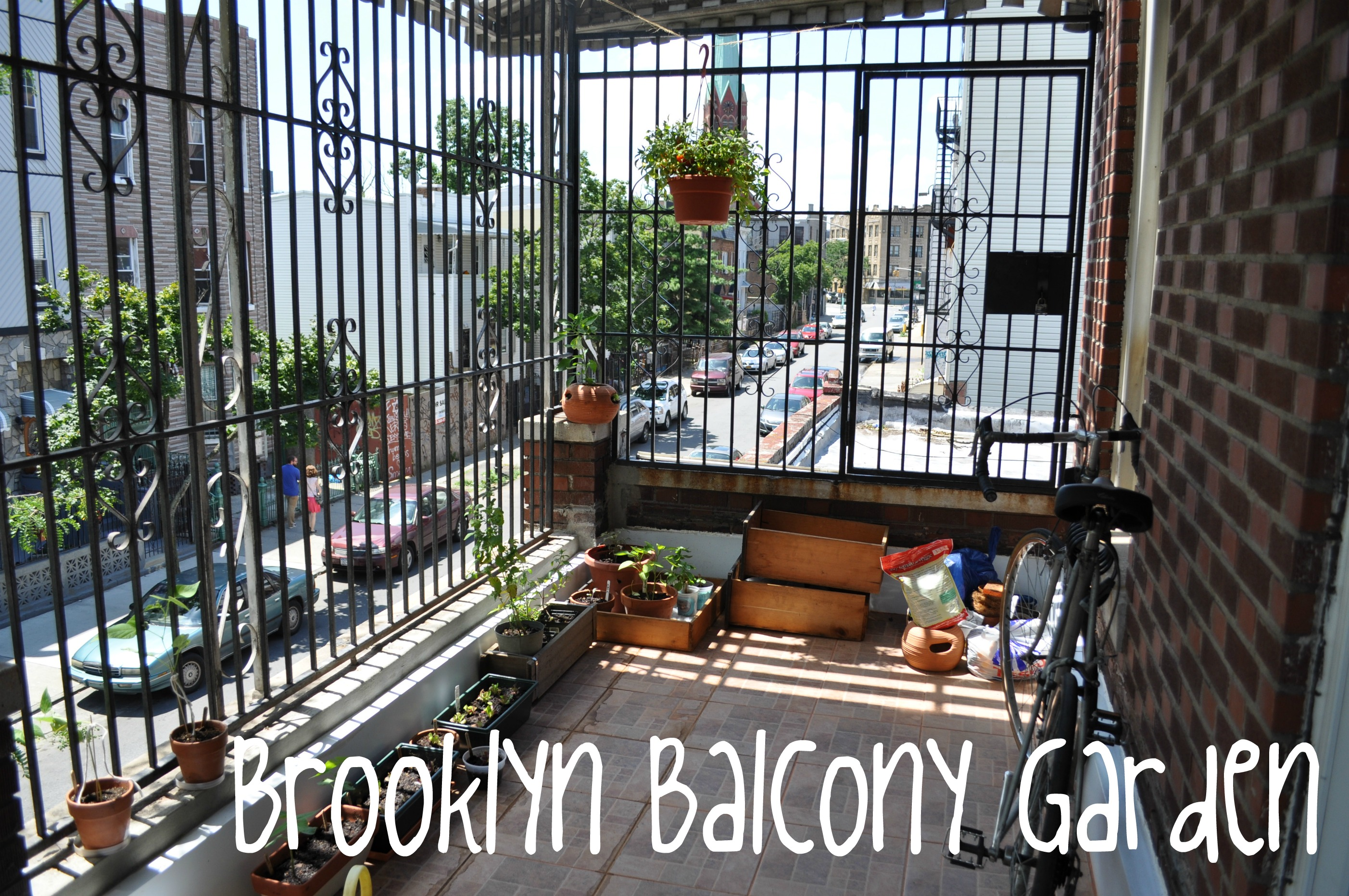 Our Brooklyn Balcony Summer Garden Some Advice For